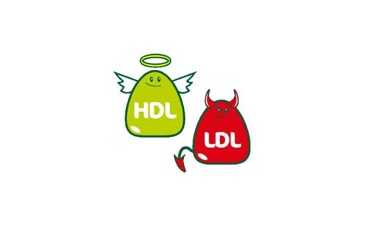 """La """"carta d'identità"""" del colesterolo: cause e sintomi del colesterolo alto"""