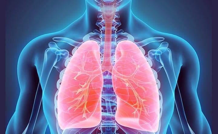 Come i batteri entrano nei polmoni