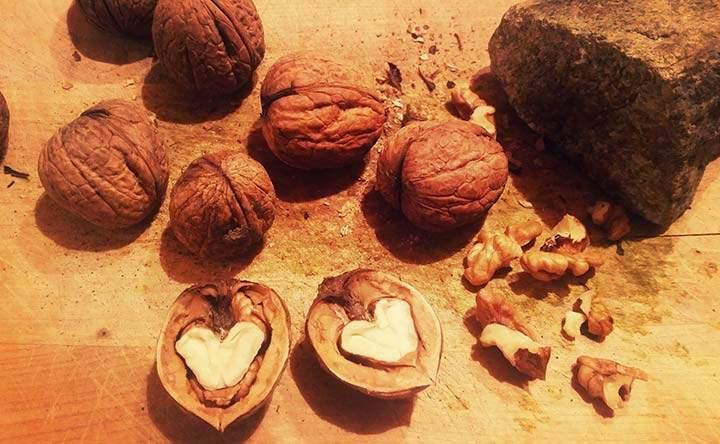 Le noci: importanti alleate per  ridurre il rischio di malattie cardiovascolari