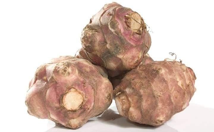 Topinambur: tubero contro il colesterolo