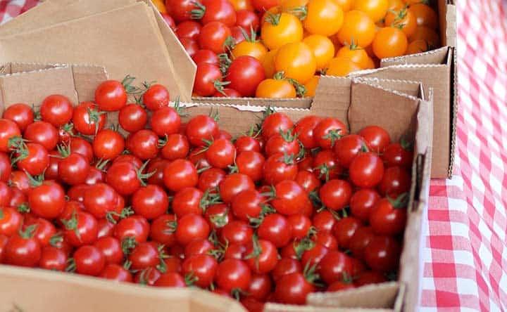 La verdura dell'estate contro il colesterolo