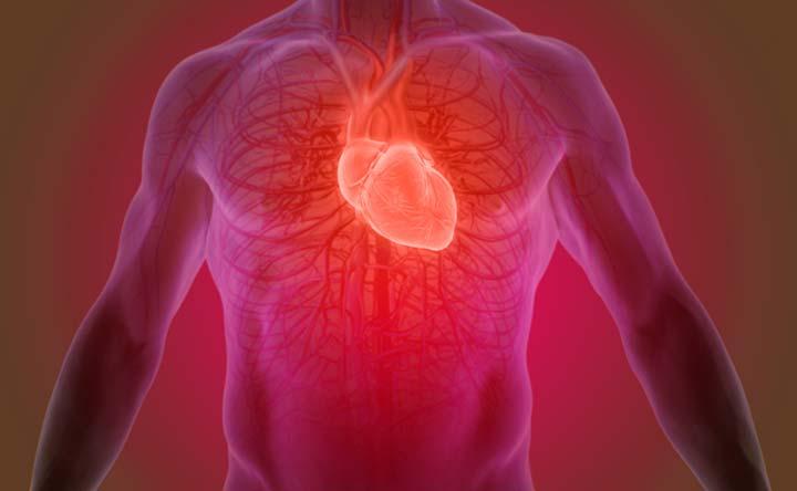 Presto la super valvola cardiaca, più sicura e più facile da impiantare