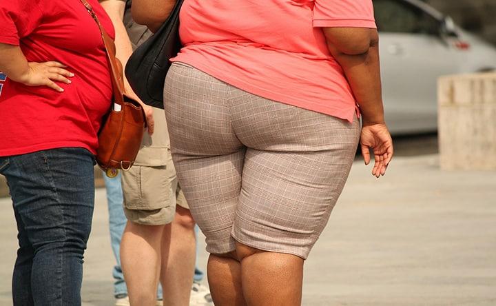 Studiare le cellule di grasso per combattere l'obesità