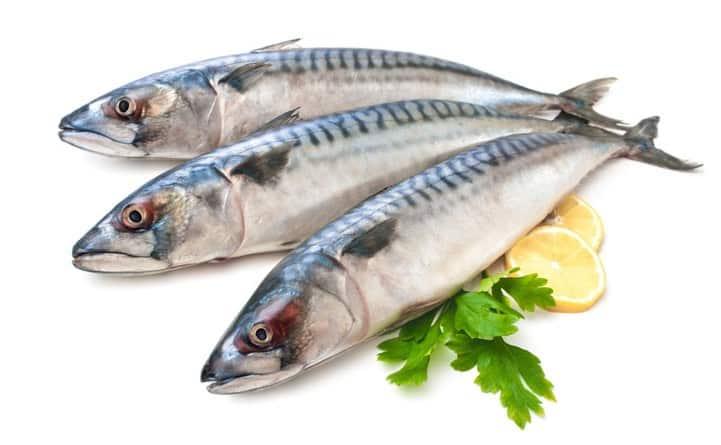 L'olio di pesce purificato potrebbe prevenire problemi cardiovascolari