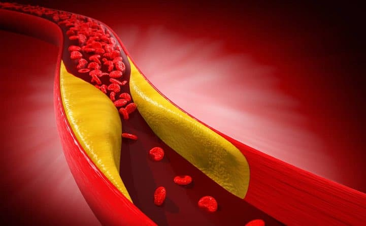 Vitamina F per abbassare il colesterolo